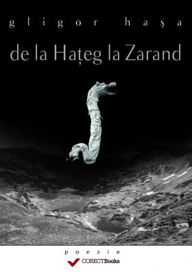 De la Hateg la Zarand