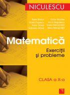 Matematica - Exercitii si probleme clasa a X-a