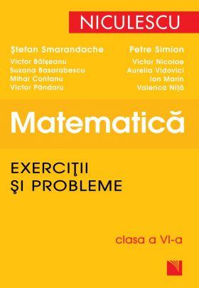 Matematica - Exercitii si probleme clasa a VI-a