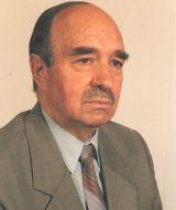 Mircea Ioan Casimcea