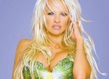 Pamela Anderson/Wikipedia
