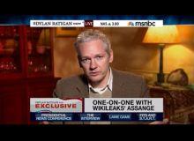 Julian Assange/captura MSNBC.JPG
