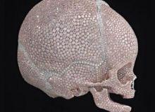 Craniu de copil cu diamante/artlistings.com