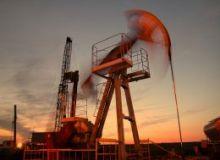 Cotatia barilului de petrol a atins 120 de dolari
