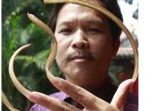 Barbatul cu unghii de 20 cm lungime/China Daily