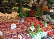 De la Ministerul Agriculturii se vede un anagricol bun pentru Romania
