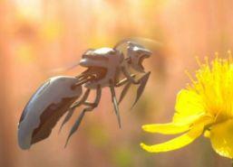 robot-bee.jpg