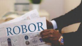robor_84362900.jpg