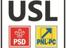 Logo_USL_oficial.jpg