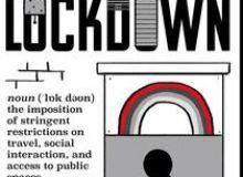 image-2020-11-10-24409814-46-lockdown.jpg