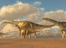 1-argentinosaurus.jpg