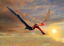 image-2021-08-11-24972327-46-thapunngaka-shawi-dinozaur-zburator-urias.jpg