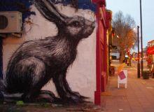 ROAs-rabbit-in-Hackney--004.jpg