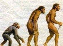 omul_de_neanderthal.jpg