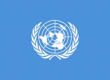 Sigla ONU.png
