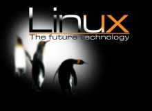 Fiind o platforma open-source, adoptarea Linux va reduce costurile IT. / linuxwallpapers.org