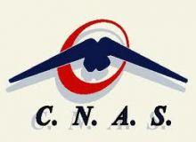 Sistemul informatic al CNAS a costat 36 de milioane de euro/bzi.ro