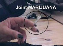 Joint_400x.jpg