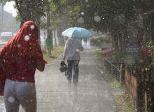 ploaie1.jpg