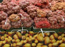 cartofi-silviu-matei.jpg