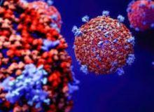 coronavirus-1000x600.jpg