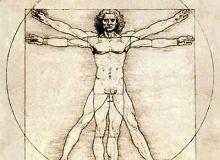 fig._1._leonardo_homo_vitruvianus.jpg