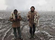image-2021-07-23-24934541-46-transylvanian-shepherds.jpg