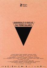 image-2021-03-2-24637635-46-babardeala-bucluc-sau-porno-balamuc-radu-jude.jpg