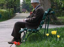 Deputatii au adoptat forma ceruta de Traian Basescu/flickr.