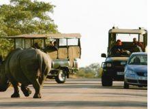 Africa de Sud/captura romanialibera.ro
