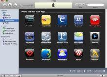 Portalul App Store al Apple este unul dintre cele mai populare, cu peste 300.00 de aplicatii.