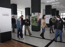 Cinematograful din Cluj, renovat complet/ZiuadeCluj