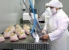 Producatorii cer masuri economice active care sa determine reducerea pretului la resursele de baza