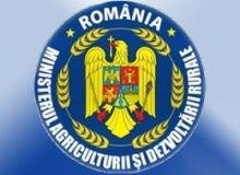 /politicaromaneasca.ro