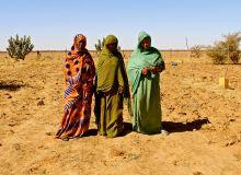 Mauritania-1.jpg