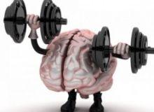 creier-sanatos.jpg