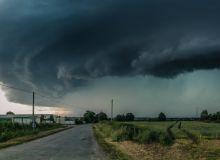 furtuna-nori.jpg