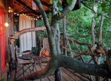image-2020-07-18-24180271-46-forest-tree-house.jpg