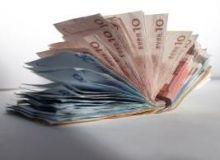 Cele 11 milioane de euro reprezinta accize, TVA si impozit pe profit. /sxc.hu