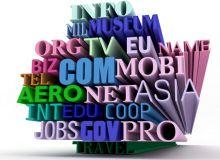 In 2010 s-a ajuns la 255 de milioane de site-uri.