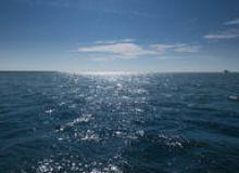 image-2020-06-9-24045283-46-ocean.jpg