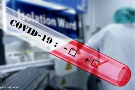 pandemie covid19 coronavirus foto pixabay com.png